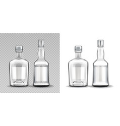 glass bottles various shapes vodka rum whiskey vector image