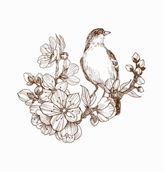 Hand drawn bird on blooming vector