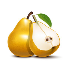 Realistic detailed 3d whole pear and slices vector
