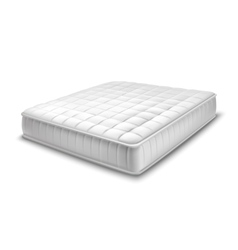 Double Mattress In Realistic Style vector image