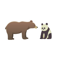 brown bear grizzly and panda vector image