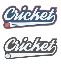 Vintage cricket label and badge vector image vector image