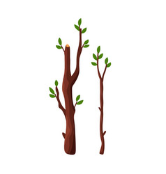 Cartoon tree branches with green leaves isolated vector