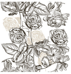 Floral seamless pattern roses in engraved style vector