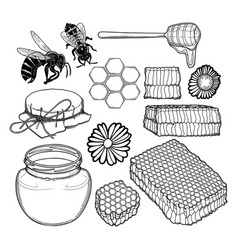 graphic set honey caps dripper honeycombs vector image