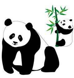 Set of cute panda bears with bamboo vector