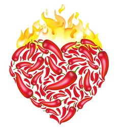 chili pepper heart vector image