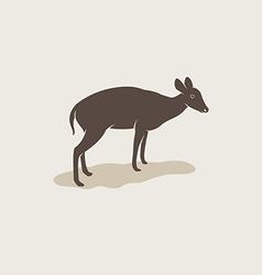 image of an barking deer vector image