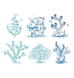 Bright doodle seaweeds underwater plants vector
