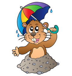 cartoon groundhog with umbrella vector image