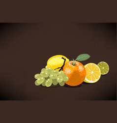 fresh fruits for squeezed juice with an orange vector image