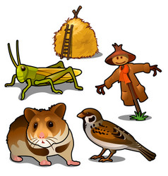 Grasshopper mouse sparrow scarecrow and haystack vector