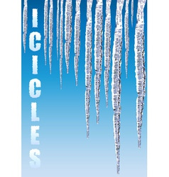 icicles chill cold vector image