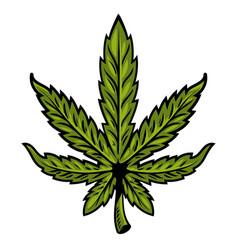 Leaf of marijuana vector