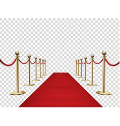Red carpet and golden barriers realistic 3d vector