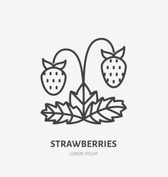 Strawberries flat line icon forest berry sign vector