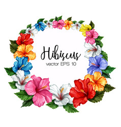 Tropical leaf hibiscus flower frame banner vector