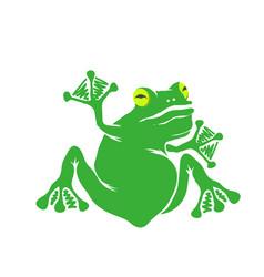 green cartoon frog isolated vector image vector image