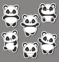 panda bear of vector image vector image