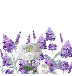 Hand drawn lavender and peony template vector