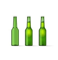 Green beer bottles set with bubbles full and vector image