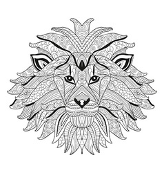 hand drawn decorative lion vector image