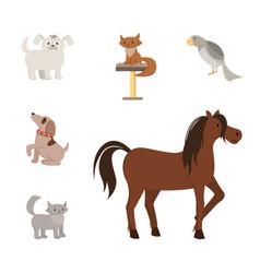 domestic animals flat set vector image