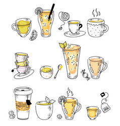Hot tea drink assortment in row doodle sketch on vector