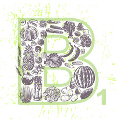 ink hand drawn fruits and vegetables vitamin b1 vector image vector image