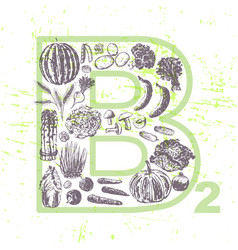 ink hand drawn fruits and vegetables vitamin b2 vector image vector image