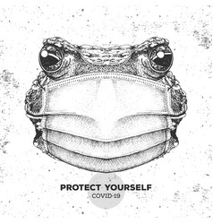 Animal frog wearing face medical mask covid-19 vector