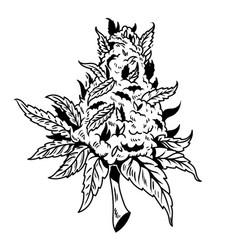 Cannabis drawing design vector