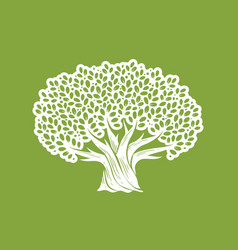 decorative tree with leaves nature concept vector image