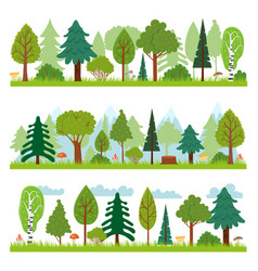 forest landscapes woodland nature trees panorama vector image