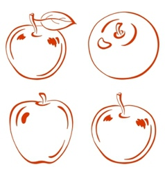 fruits outline apples vector image