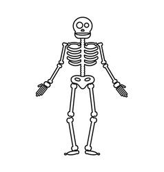 Happy Halloween skeleton vector