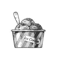 Ice cream served in paper bowl vector