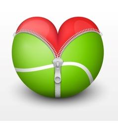 Red heart inside tennis ball vector image