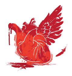 red human heart with one wing and blood vector image