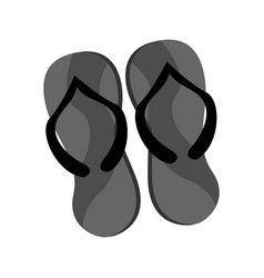 Sandal grey slippers summer stuff graphic design vector