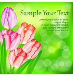 Tulip flowers on green vector