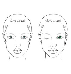 face chart woman vector image