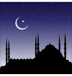silhouette of mosques vector image