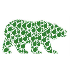 bear collage of plant leaf items vector image