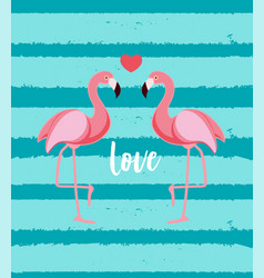 cute flamingo love background vector image