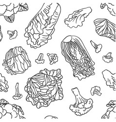 Doodle cabbage seamless pattern hand drawn vector