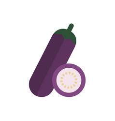 flat a eggplant vector image