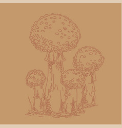hand drawn outline of fly agaric on vector image