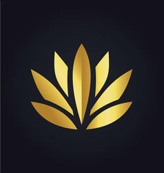 Lotus flower beauty color gold logo vector