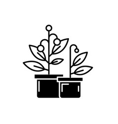 potted house plants black icon sign on vector image
